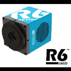 Retiga R6™